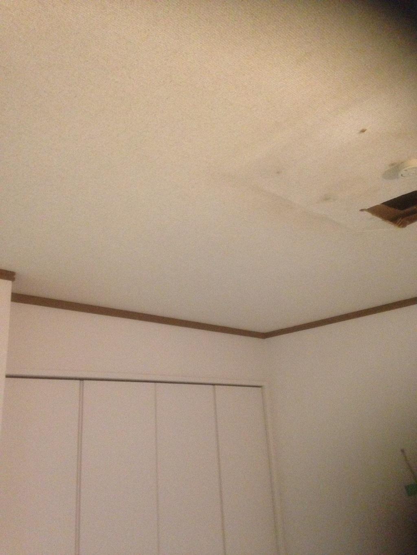 天井の状況
